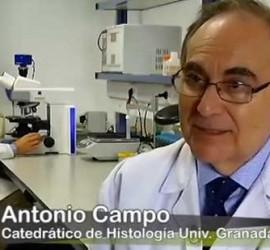 Fotografía de Antonio Campo, uno de los investigadores que han creado piel artificial a través de células madre