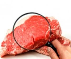 Fotografía de un filete de carne roja con una mano y una lupa que la examinan