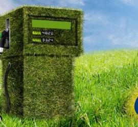 Un surtidor formado por hierva en medio de un prado. La imagen tiene relación con la empresa de Biocombustible Neol